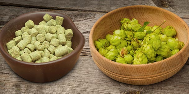 Pellet Hops vs Whole Hops
