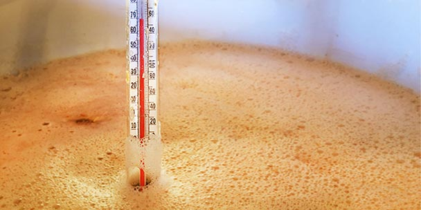 Specific Gravity: How to Measure it When Brewing Beer