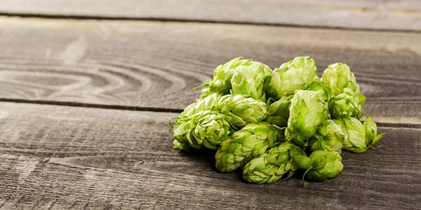 Dry-Hopping Your Beer