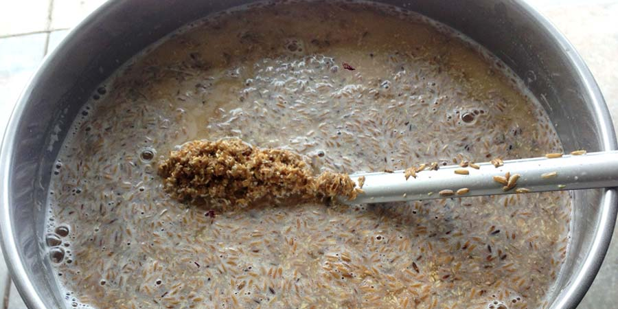 Brewing With Brettanomyces