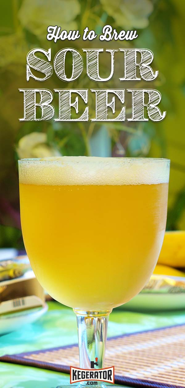 How to Brew Sour Beer - Tips & Recipe