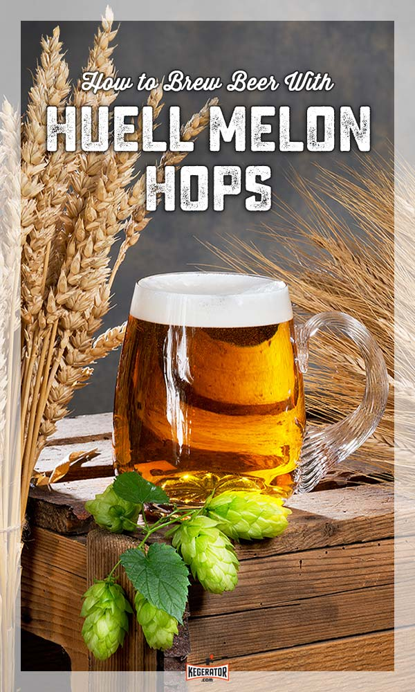 How To Brew Beer With Huell Melon Hops