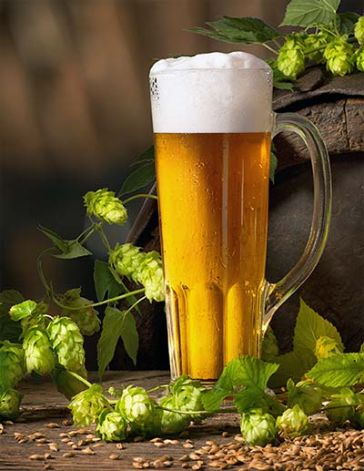 Light Beer With Cashmere Hops