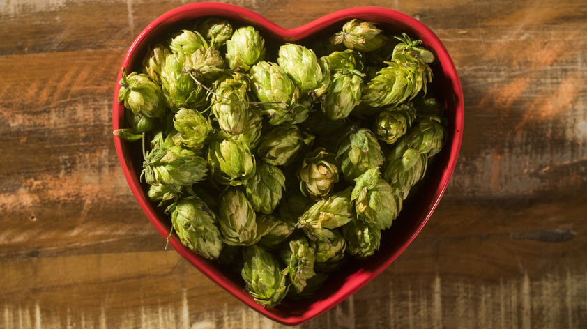 Heart shaped bowl of hops