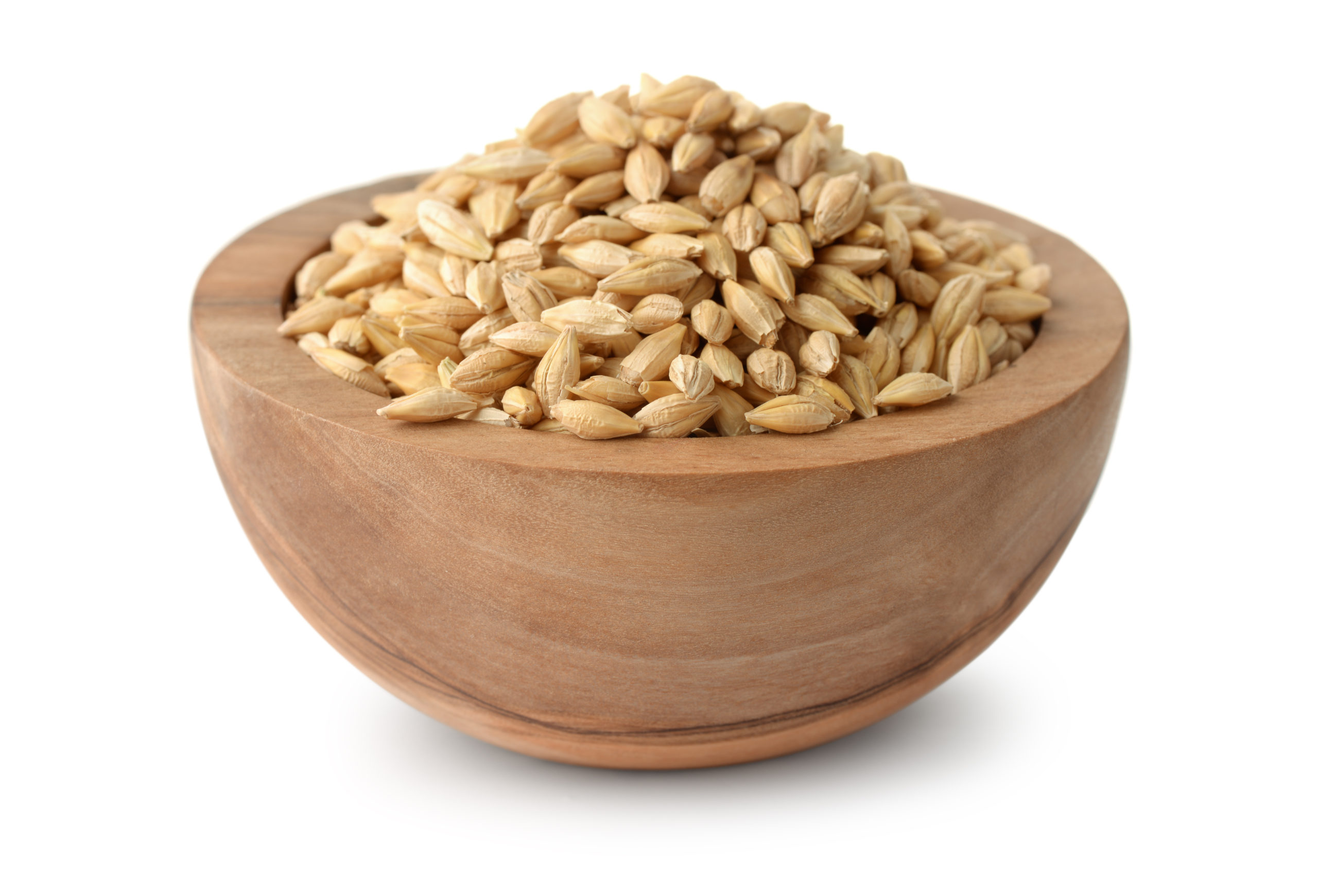 Wooden bowl of barley grains isolated on white